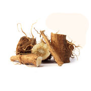 Inulin, an extract of the chicory root, is a soluble fiber that serves as a prebiotic and a natural source of Vitamin C.