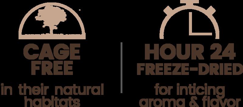 Premium Freeze-dried Cage-free Turkey Breast Treats