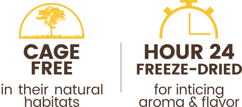 Premium Freeze-dried Cage-free Duck Breast Treats