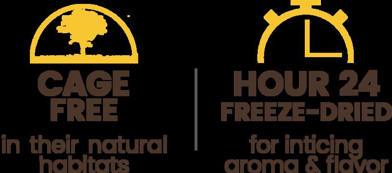 Premium Freeze-dried Pasture-raised Duck Breast Treats