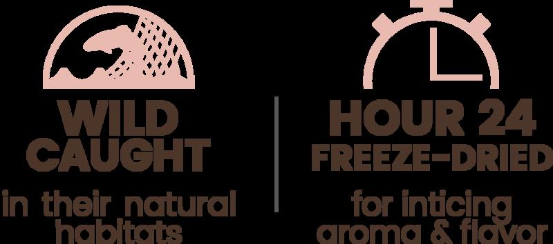 Premium Freeze-dried Wild-caught Shrimp Treats