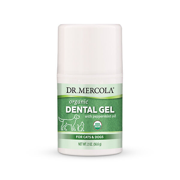 Organic Dental Gel