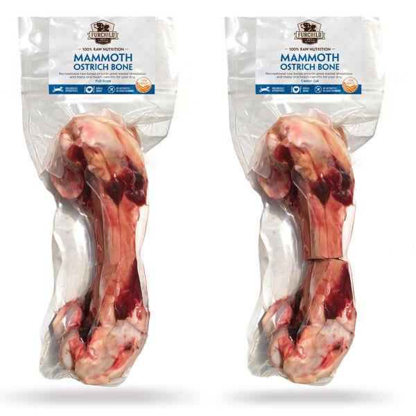Mammoth Ostrich Bones