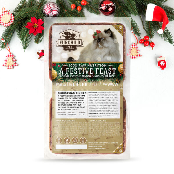 A Festive Feast for Cats